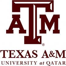 جامعة تكساس أي أند إم في قطر